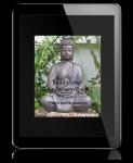 Buddhismus Grundwissen Band 2: Frieden kommt von innen